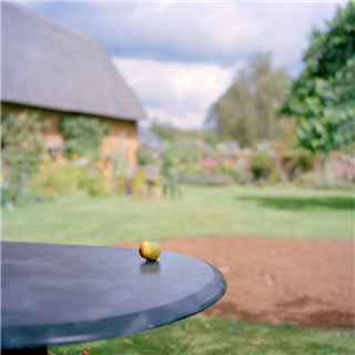 Table with an apple in a country garden. Photography by Roy Mehta
